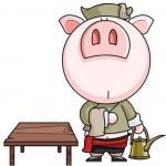 浮图塔2016年12月份生肖猪运程