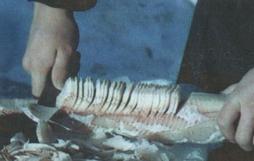 真正吃鱼的方法!赫哲族鱼刨花