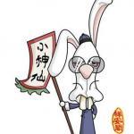 不能只看属兔和什么属相最配 还要看月份!