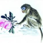 猴年农历几月份生宝宝命运最好