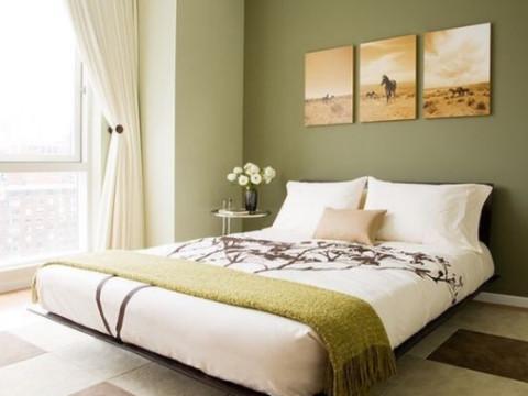 单身女性卧室摆放哪些花能旺桃花