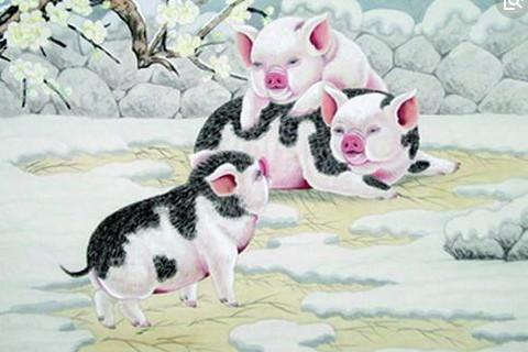 2018年12月生肖猪运势运程