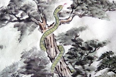 2018年12月生肖蛇运势运程