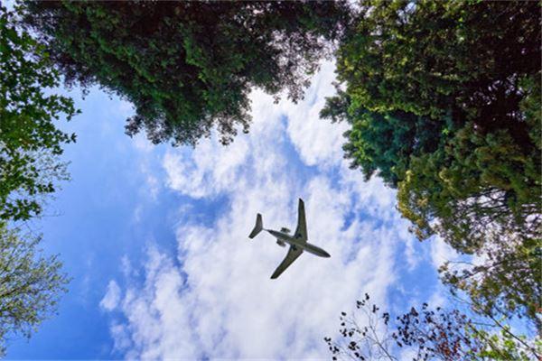 梦见很多飞机在天上飞