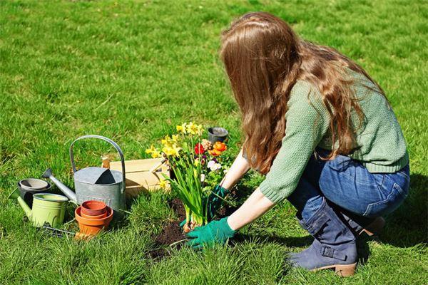 女人梦见把花重新栽了