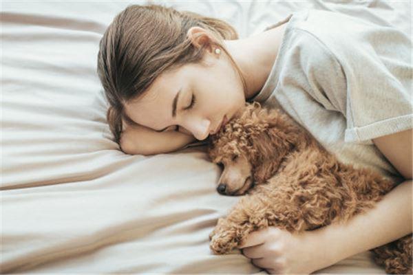 女人梦到狗死了
